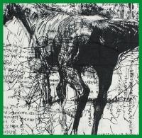 Mapoesie, Horse-ref# L Square